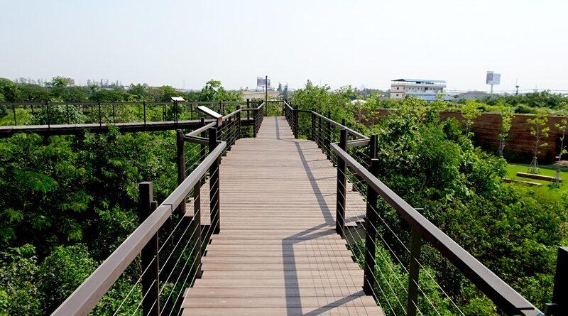 Skywalk โครงการ ป่าในกรุง
